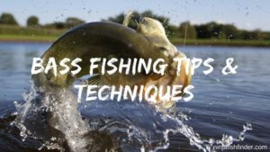 25 Bass Fishing Tips and Techniques From Pro Anglers