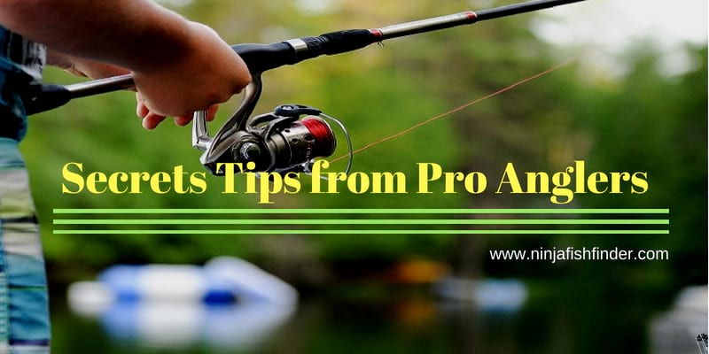 How to Catch Bass | Secrets from Pro Anglers